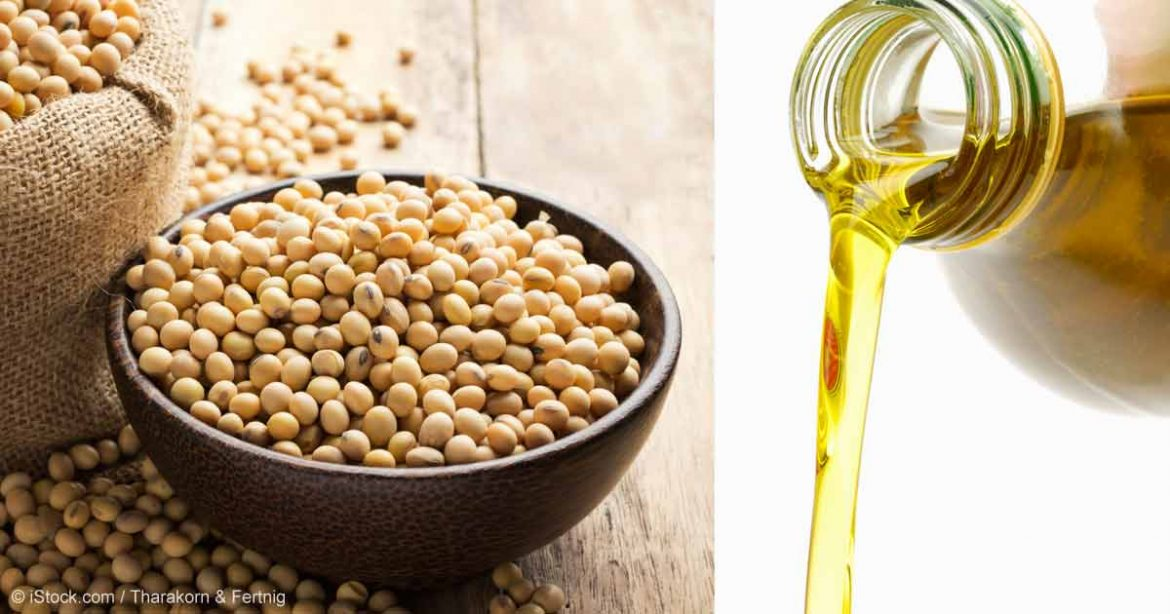 12 Amazing Health Benefits of Hemp Seed Oil for People