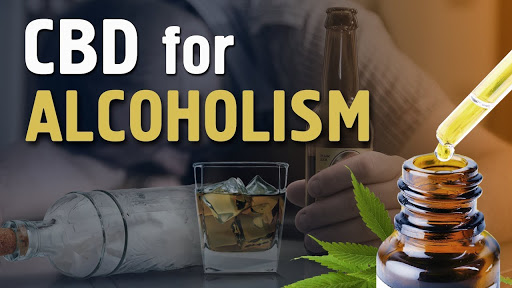 CBD for Alcoholism: Can it Really Help?