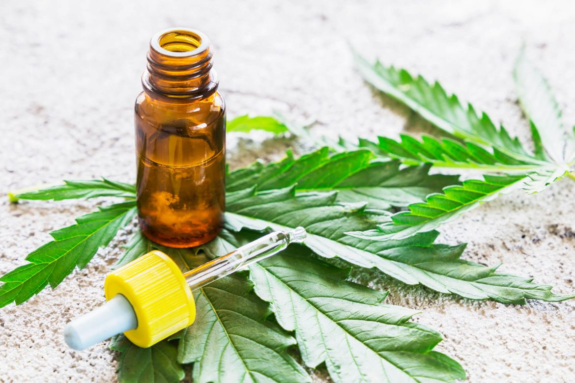 What Is Hemp and Why Is It so Popular?
