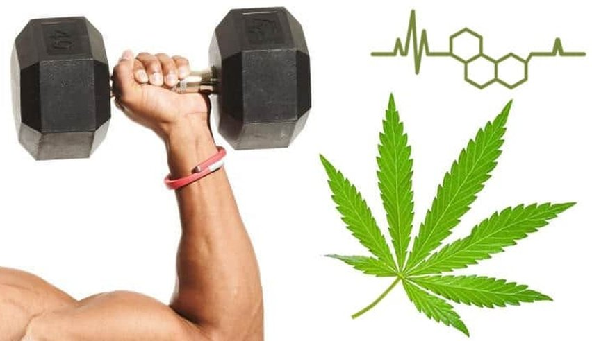Top 7 Reasons to Use CBD After Exercise