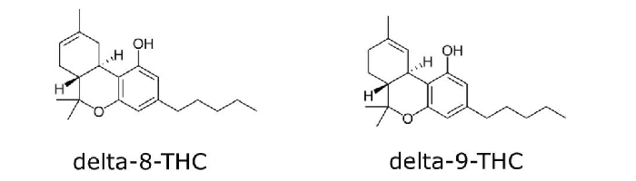 Delta-8 vs. Delta-9 – Similarities and Differences