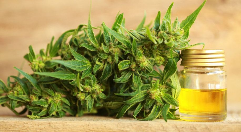 Buy CBD Oil for Health Benefits