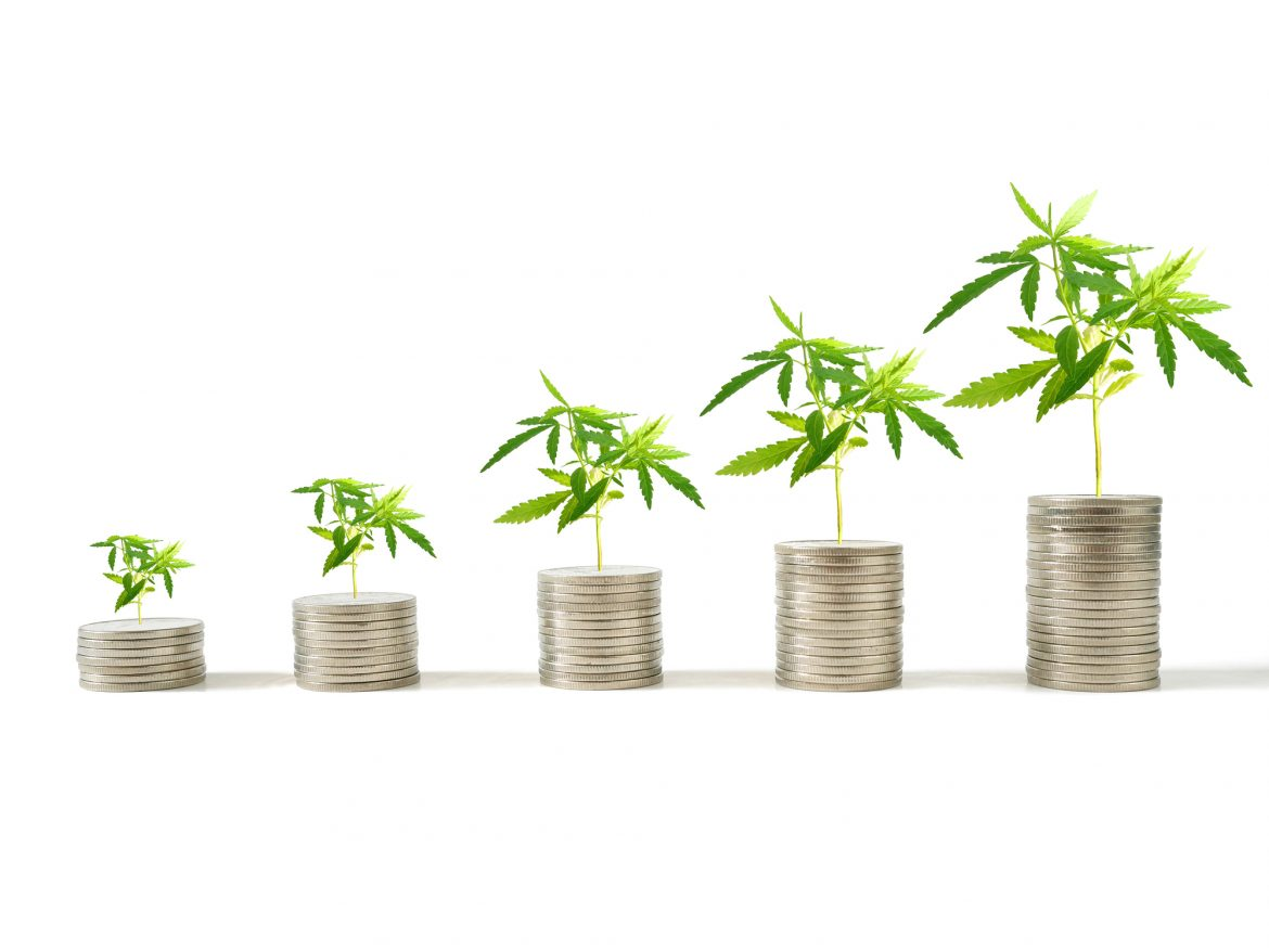 5 Things to Know When Buying Cannabis